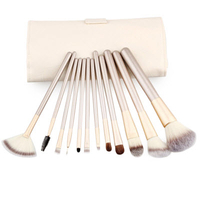 Professional Makeup 12 Brush Set